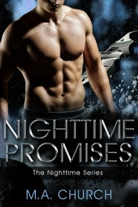 Nighttime Promises SMALL