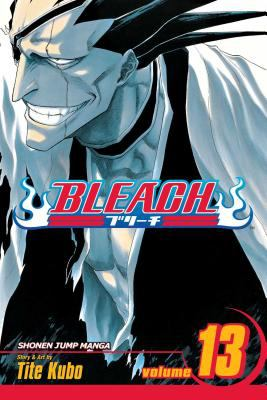 Bleach, Vol 13 cover